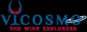 Vicosmo Logo Hero Stories